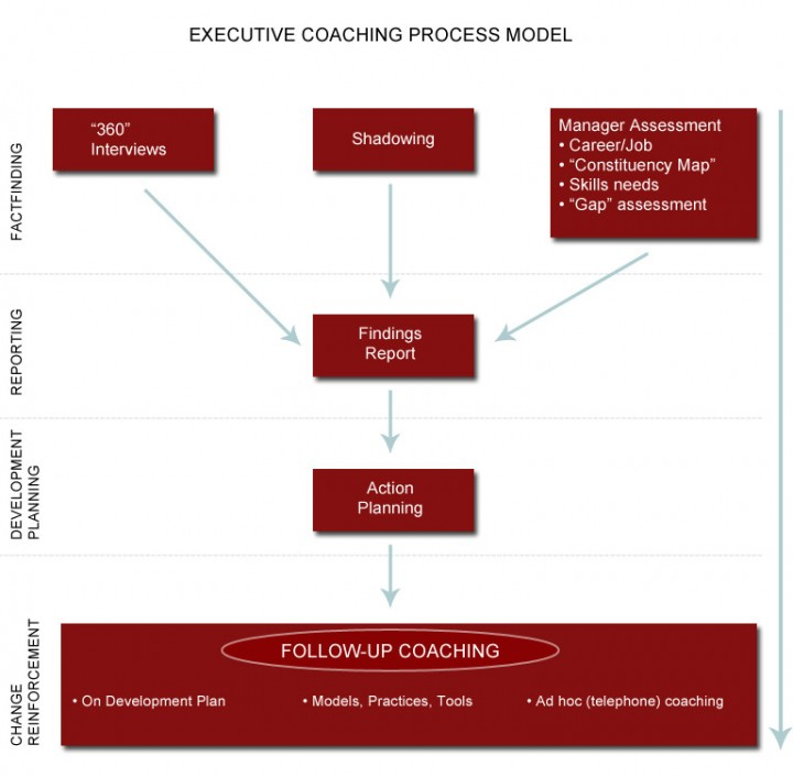 Executive Coaching Process Model